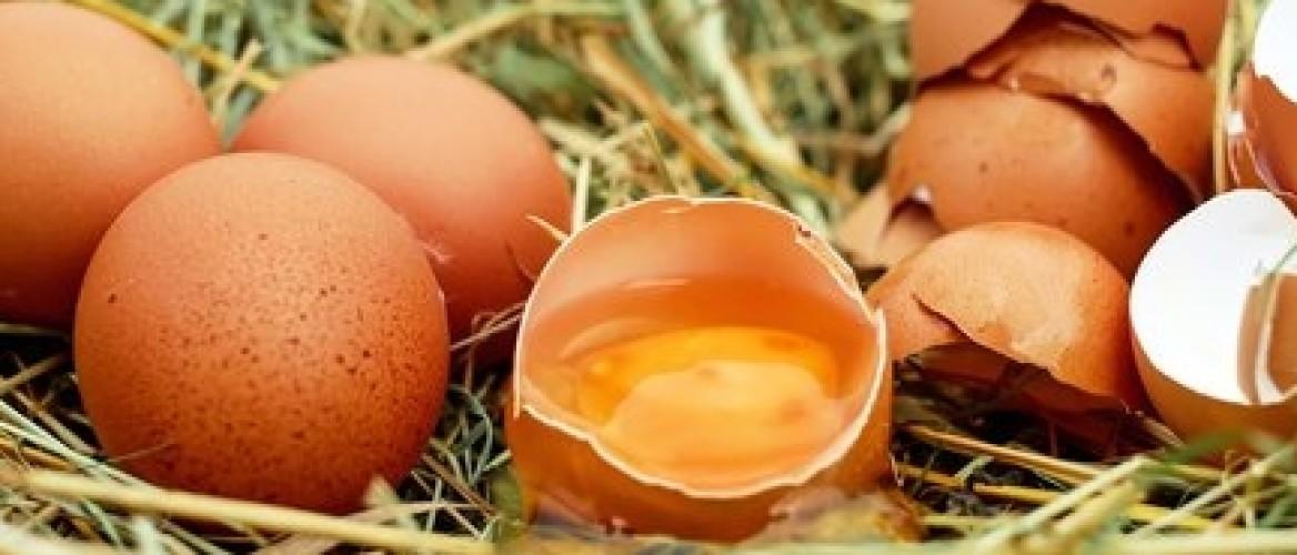 ONTHULLING: Eieren zijn hartstikke gezond!