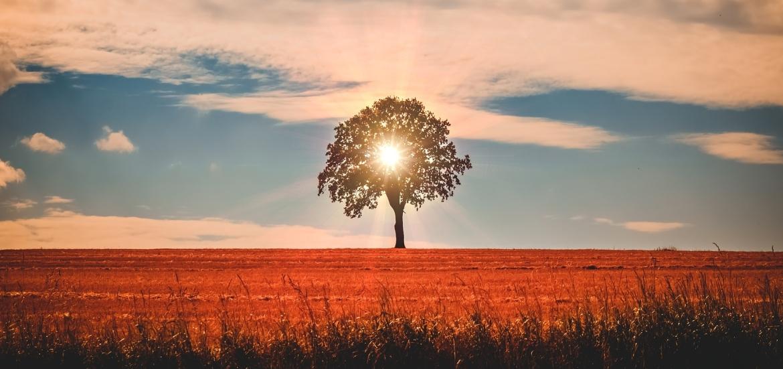 meer energie door de zon