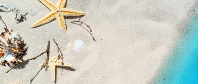 Gezond de zomer door! 6 geweldige tactieken.