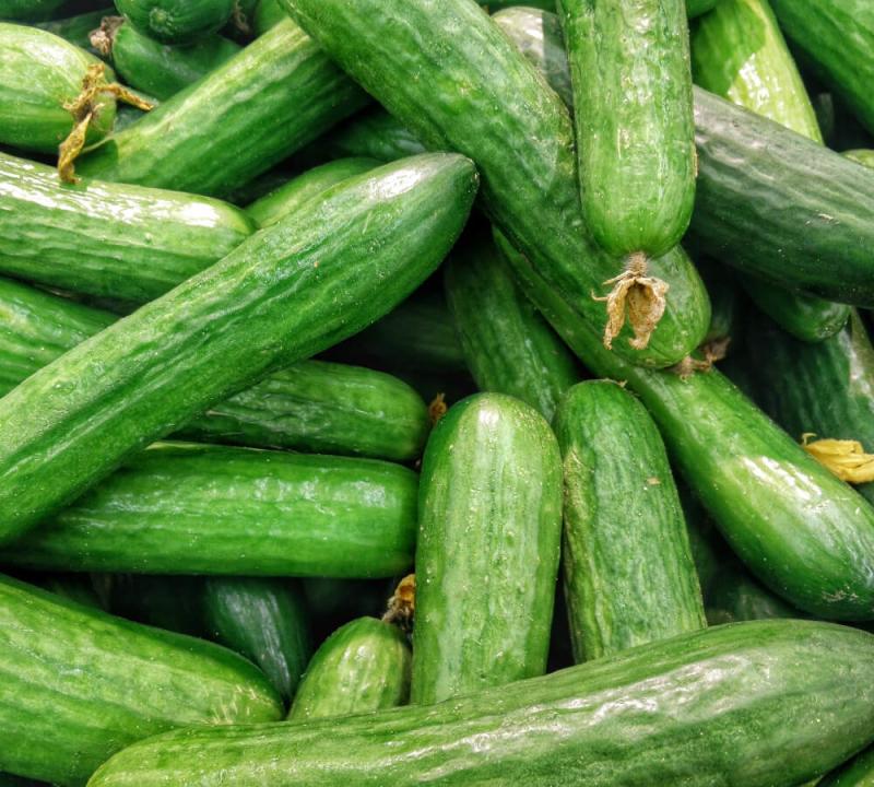 Waarom is de komkommer gezond?