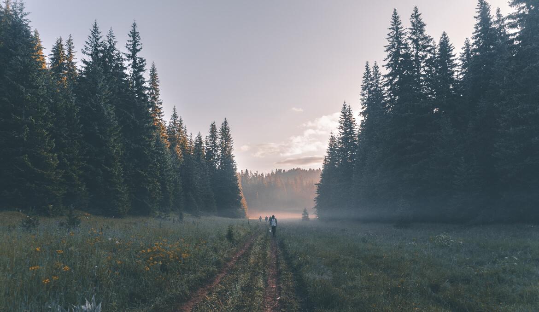 Is ziekte een reflectie van ons leven?