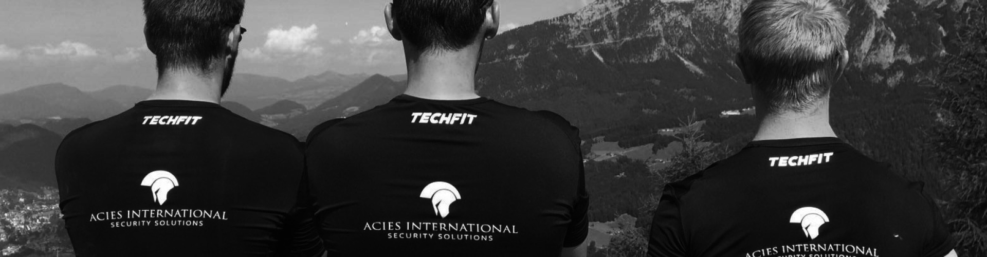 Acies International - About Us