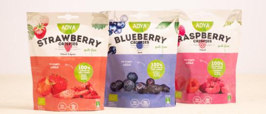 adya rood fruit gevriesdroogd snack take away gezond gemakkelijk