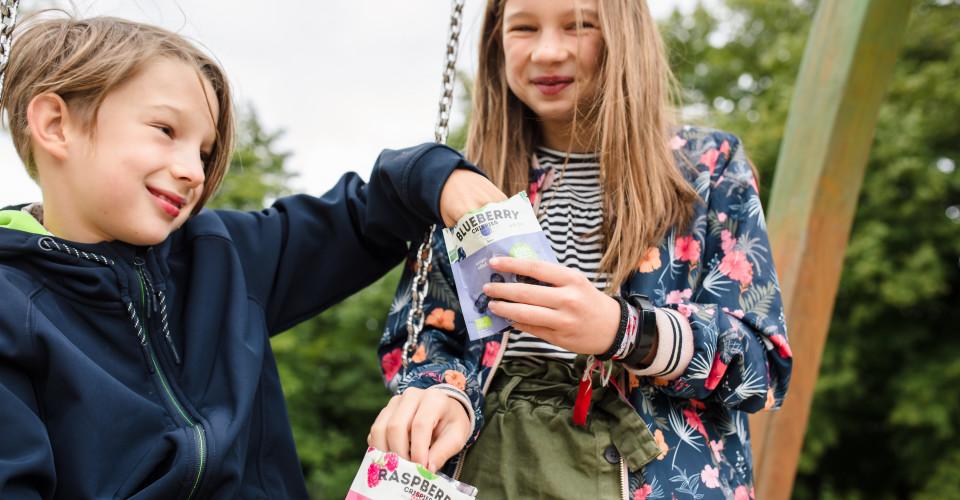 bio fruit snacks gemakkelijk gezond kinderen school kantoor sport
