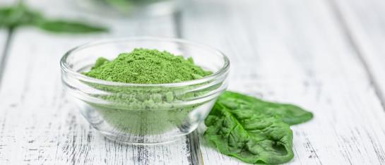 spinazie gevriesdroogd bio poeder
