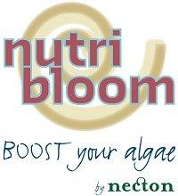 Necton logo