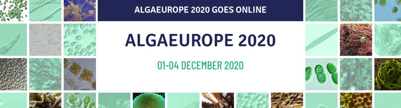 AlgaEuroope 2020