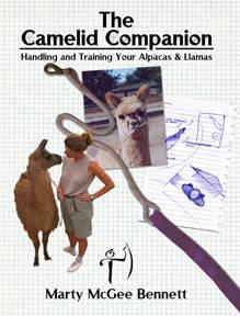 Camelid Companion