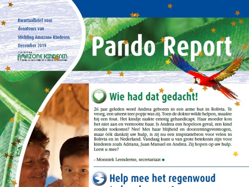 Pando Report december 2019