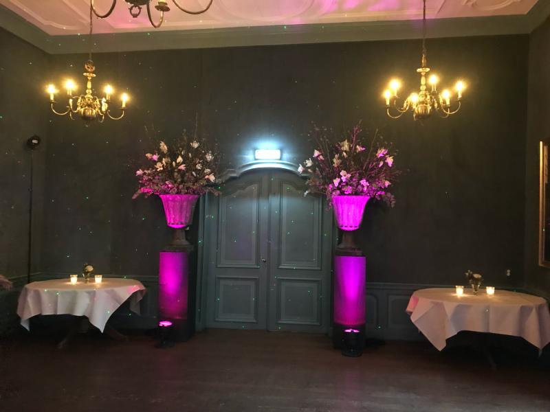 DJ boeken in Echteld Kasteel Wijenburg uitlichten ornamenten Blauwe Salon