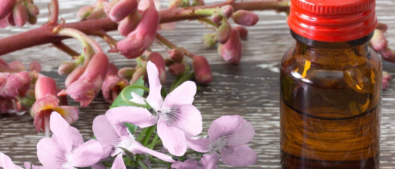 homeopathie vuurwerkangst