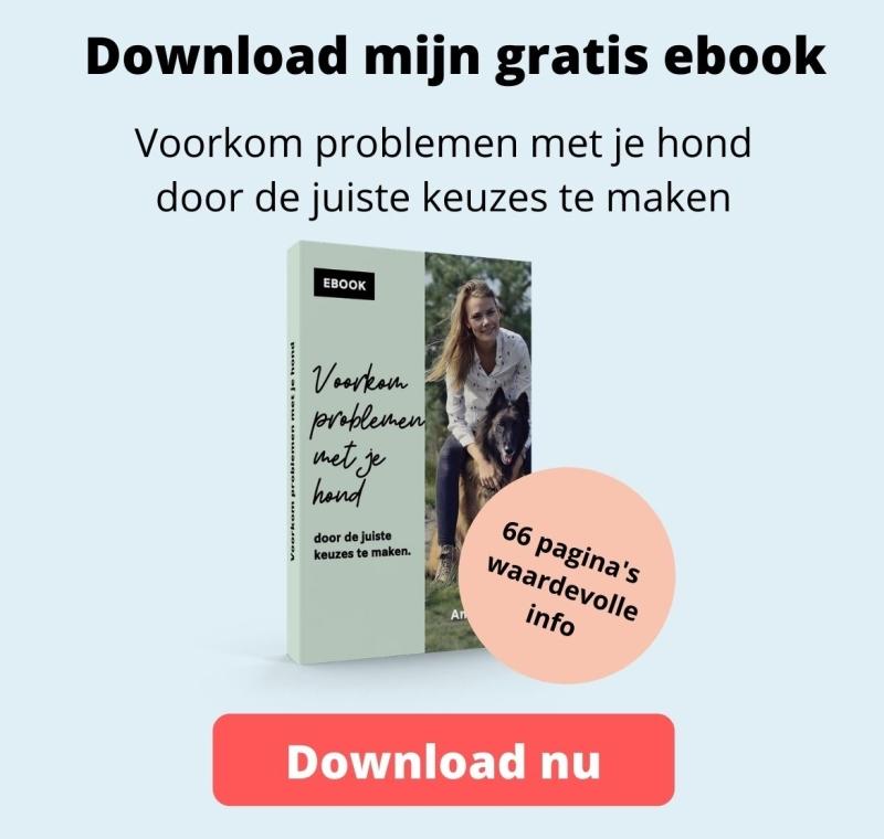 Ebook hondengedrag