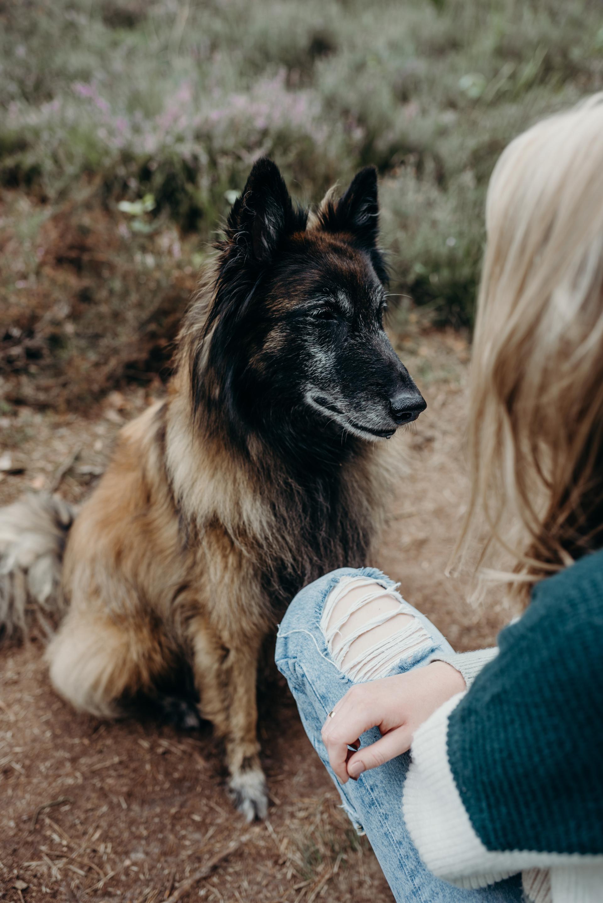 Hondencoach Aniek Wendt