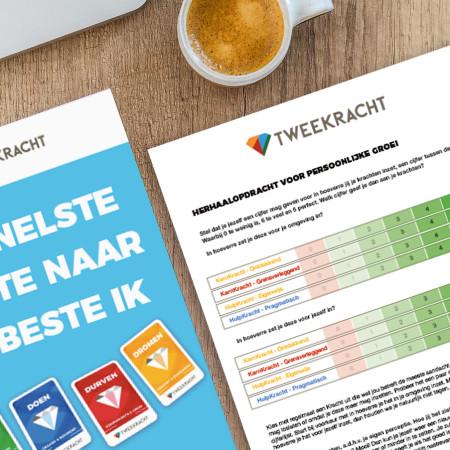 TweeKracht KernKrachten rapport en werkboek