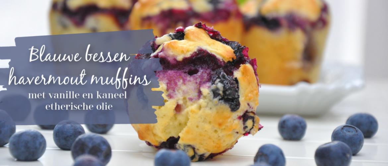 Blauwe bessen havermout muffins, met vanille en kaneel etherische olie