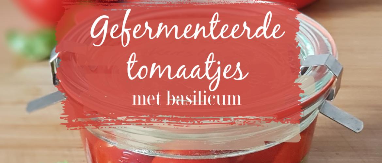 Gefermenteerde kerstomaatjes met basilicum, een echte smaakexplosie