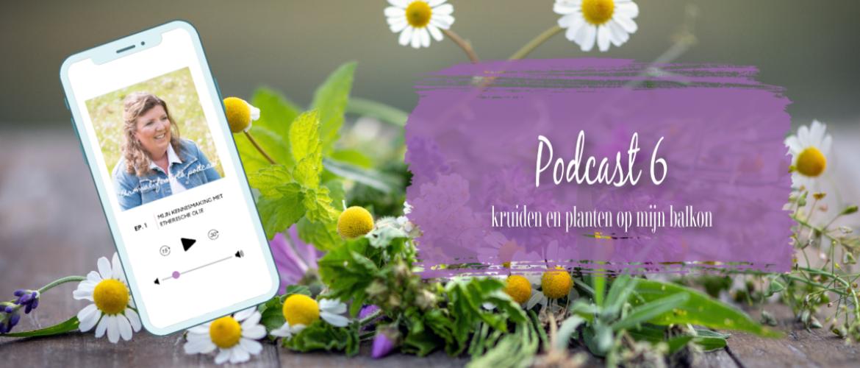 Podcast 6, alles over de kruiden en planten op mijn balkon