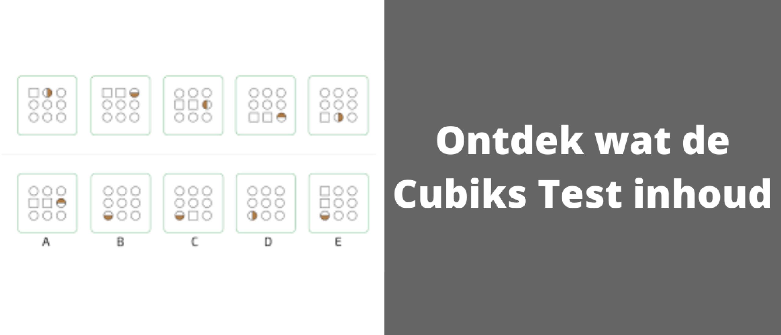 Ontdek wat de Cubiks Test inhoud