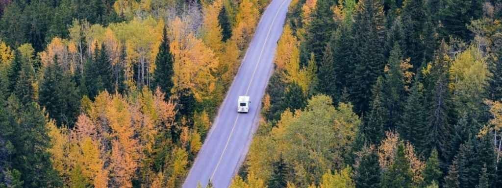 Bearlock versnellingsbakslot camper veilig op weg