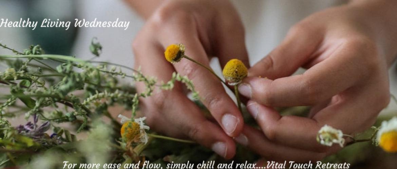 3 amazing health benefits of chamomille
