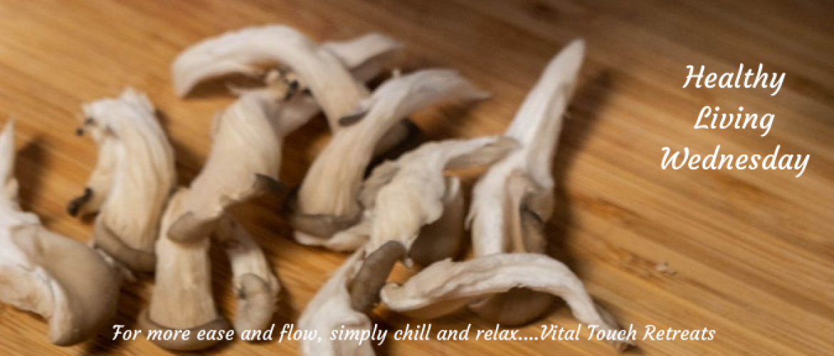 3 amazing health benefits of oyster mushrooms