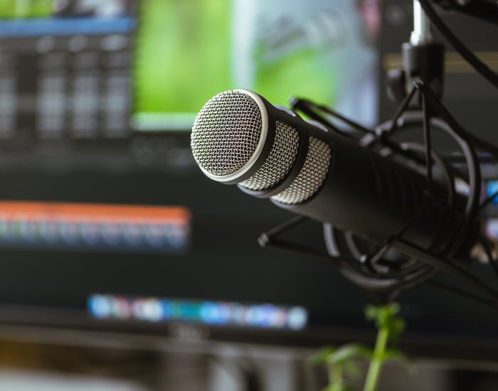 Barbara de Bruyckere podcasts