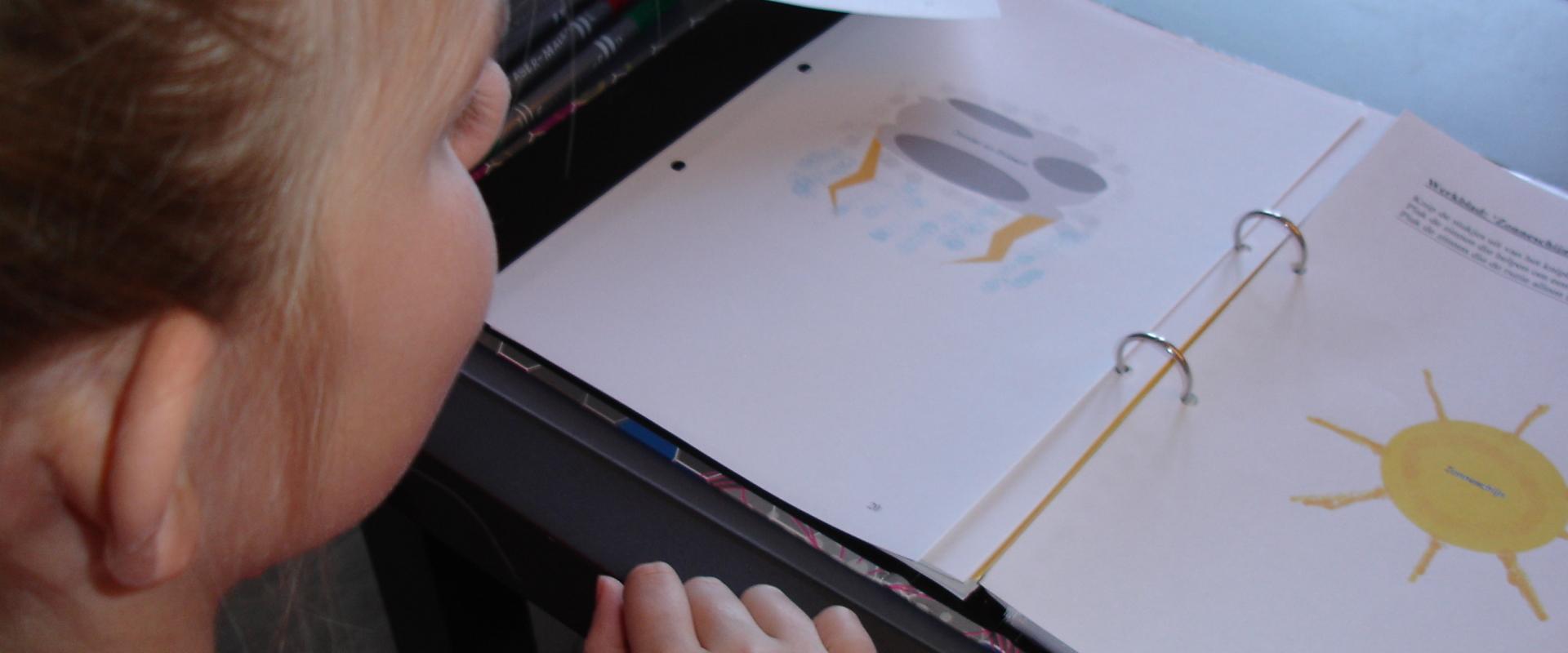 Leesproblemen en beelddenken
