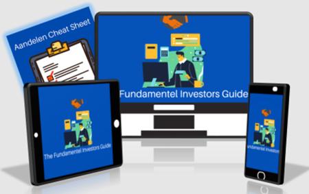 visual-fundamental-investors-guide-grey