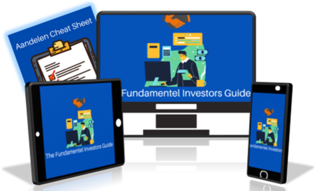 Fundamental Investors Guide