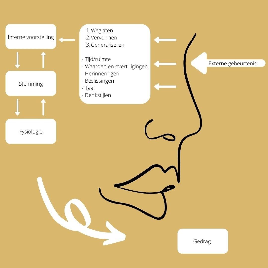 Berim | Communicatiemodel | 5 tools waardoor je effectiever communiceert