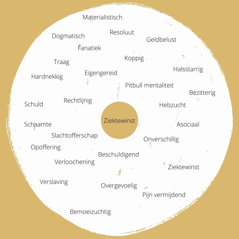 Berim | Verschijningsvormen van ziektewinst gedrag