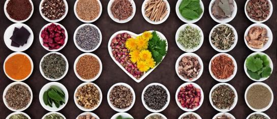 Gezondheidsprogramma en gezondheidsplan dieet advies acupunctuur Eindhoven & Best