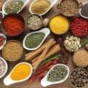 Gezondheidsprogramma en gezondheidsplan dieet advies