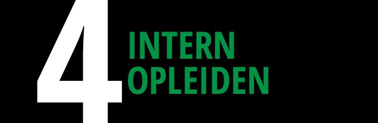 intern-opleiden-stappenplan-turntrainers