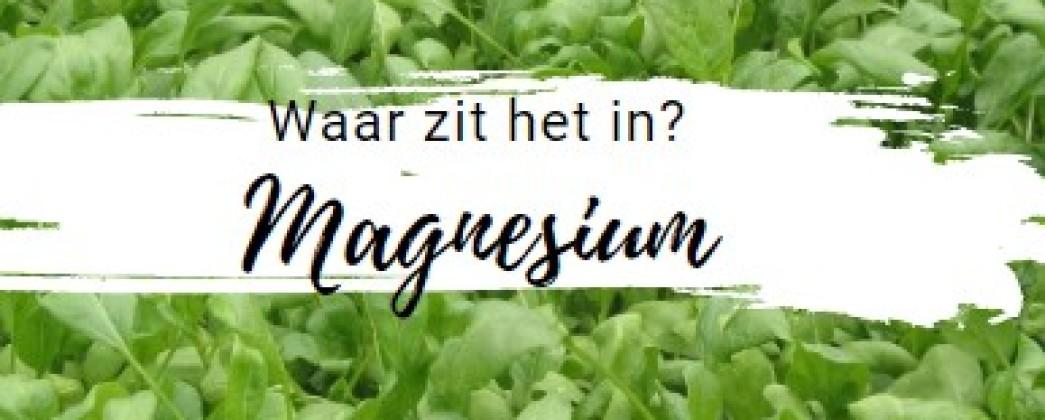 Magnesium, de 'manager' van je gehele energiestofwisseling.