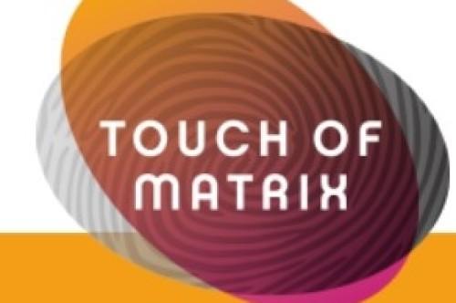 logo Touch of Matrix
