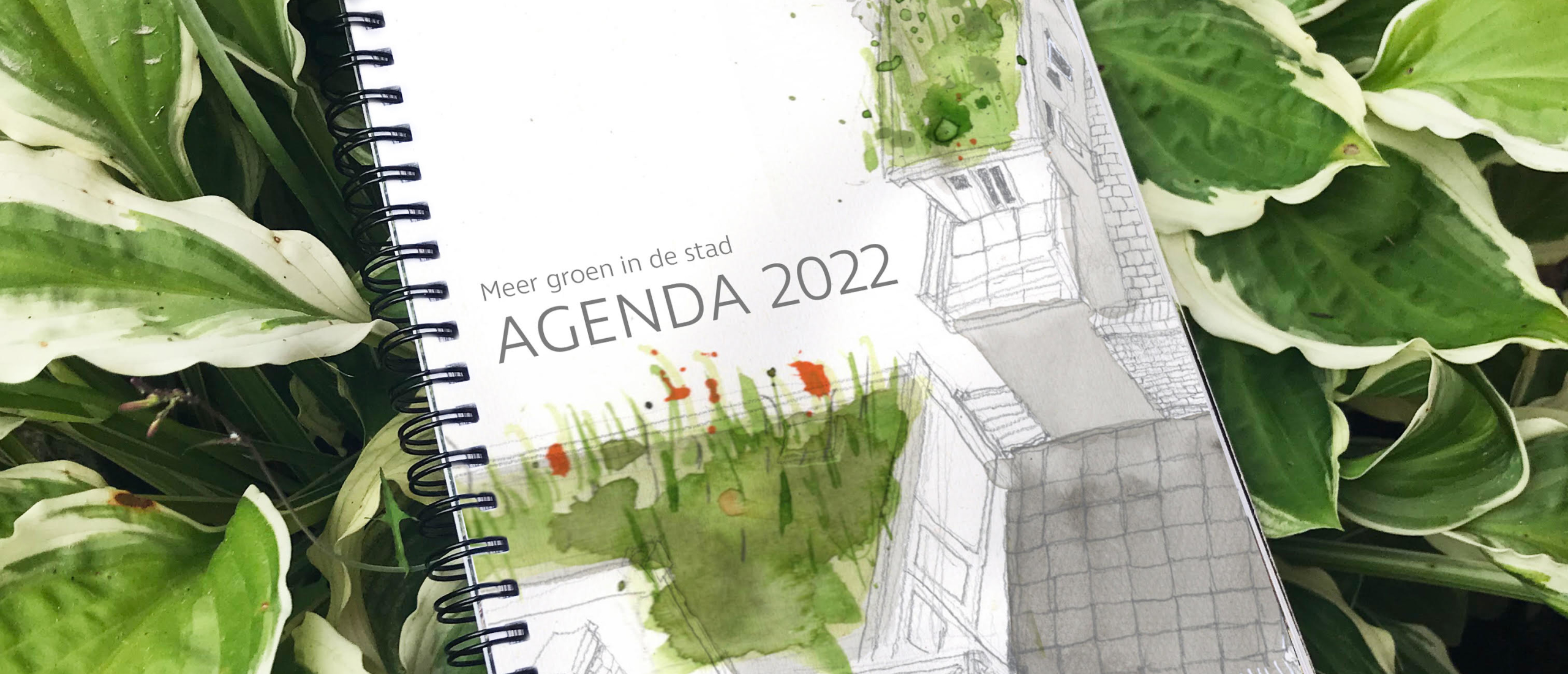 Nieuw: Meer groen in de stad agenda 2022