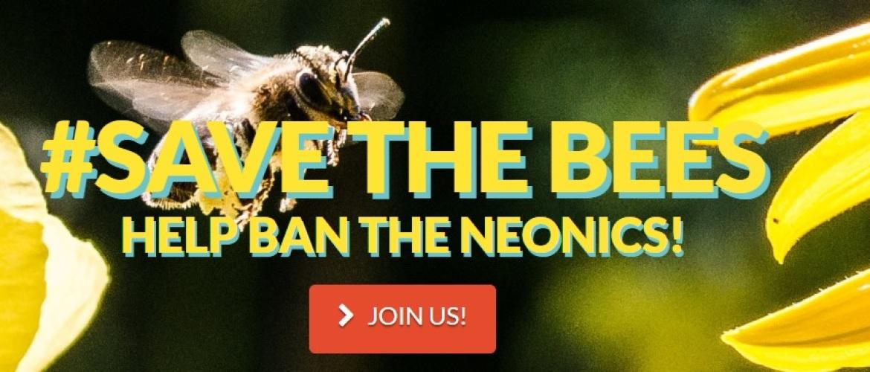 Sulfoxaflor and flupyradifurone blijken giftiger voor bijen te zijn dan verwacht.
