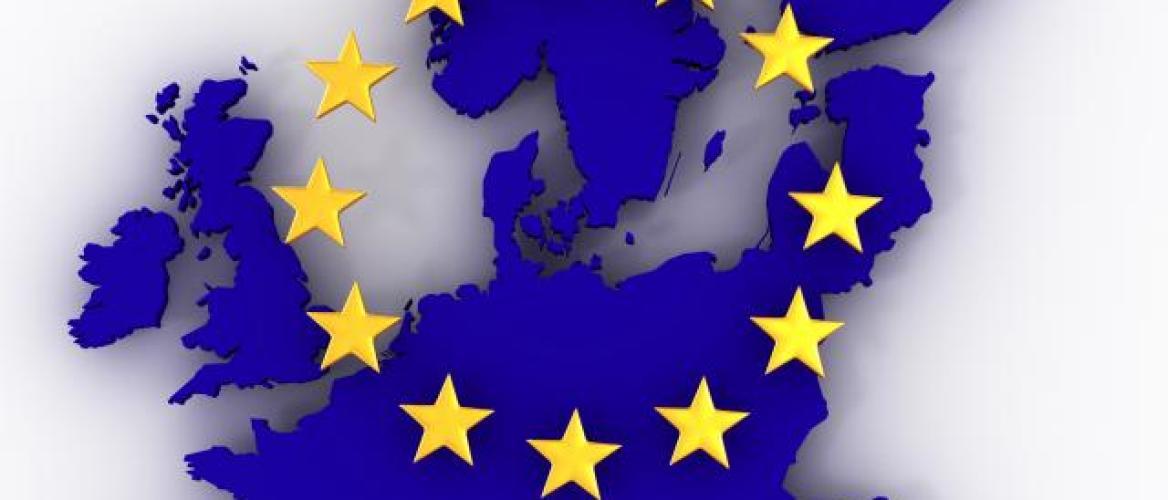 Europees hof besluit dat Europese Commissie juist heeft gehandeld om Neonicotinoiden in 2013 te verbieden.