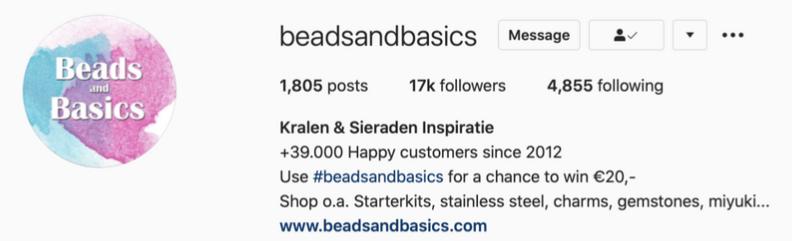 voorbeeld-instagram-bio