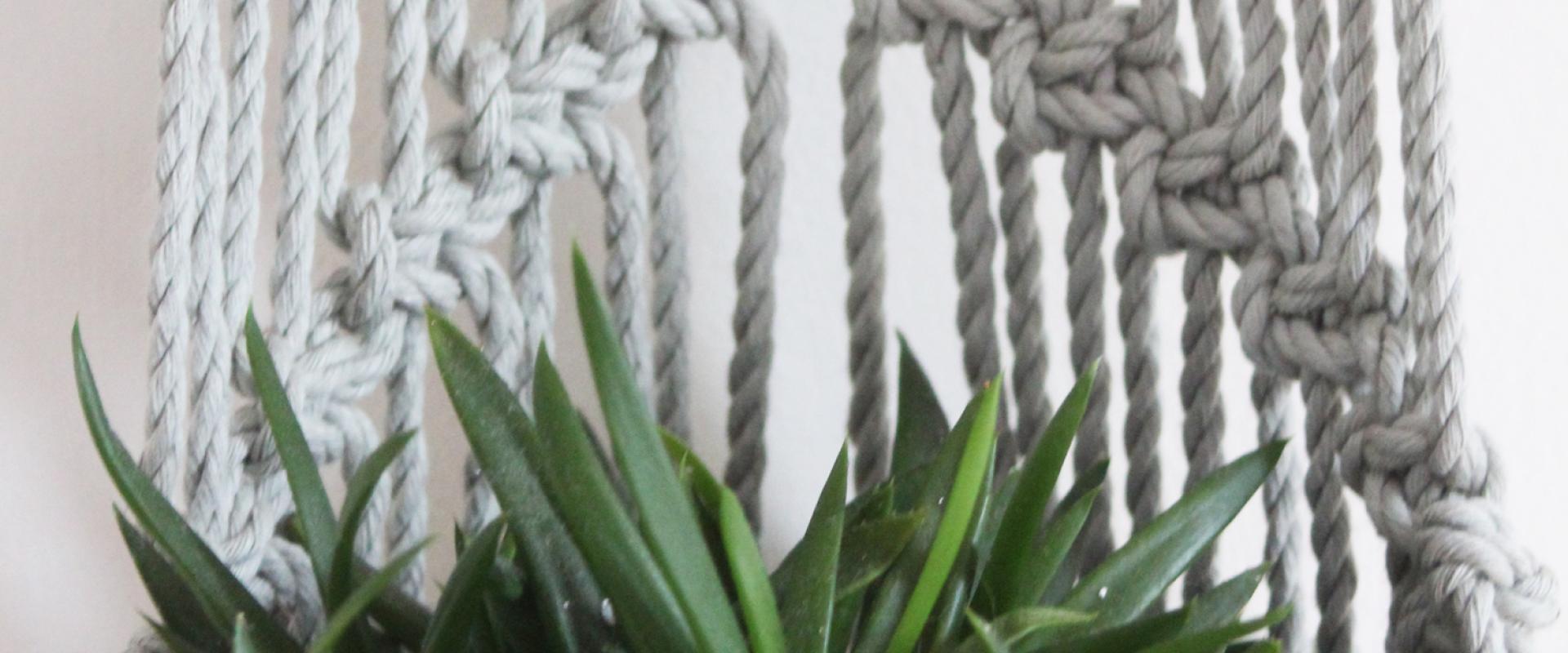 Macramé Wand Plantenhanger Maken: Toffe Variatie Plantenhanger