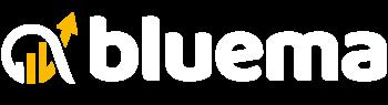 bluema online marketing 1