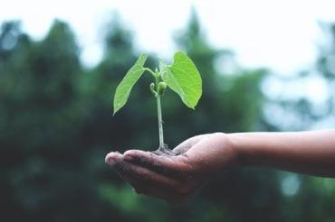 verbeter het milieu