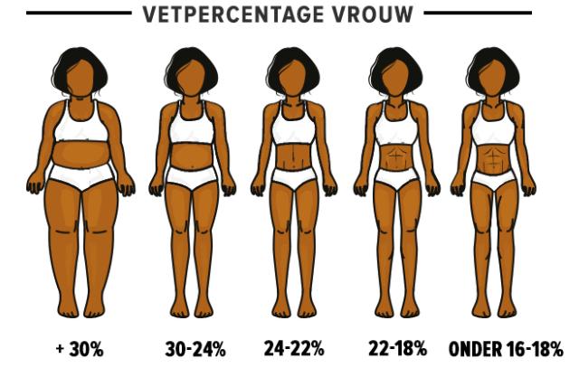 Vrouw vetpercentage