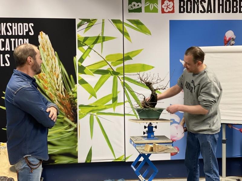 Bonsai cursist