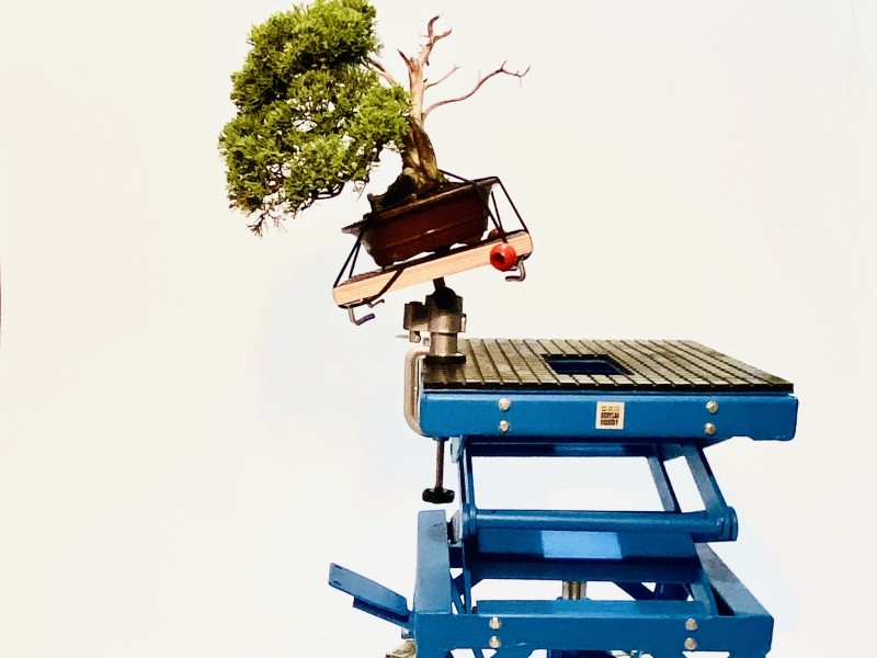 Bonsai mini werktafel op Masterlift