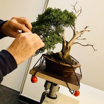 Werktafel voor shohin bonsai