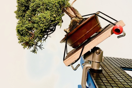 Kantelbare shohin bonsai werktafel