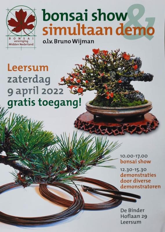 Bonsai show ol v Bruno Wijman