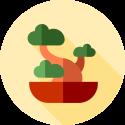 Bonsai gereedschap webshop